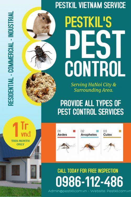 Poster_Pestkil Ltd (6)
